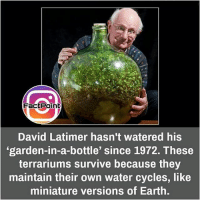 Follow our page for more Facts 😇 Don't forget to tag your friends 💖: FactPoint  David Latimer hasn't watered his  'garden-in-a-bottle' since 1972. These  terrariums survive because they  maintain their own water cycles, like  miniature versions of Earth. Follow our page for more Facts 😇 Don't forget to tag your friends 💖