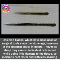 Blade, Facts, and Memes: FactPoint  Obsidian blades, which have been used as  surgical tools since the stone age, have one  of the sharpest edges in nature. They're so  sharp they can cut individual cells in half  while doing little damage to the tissue, so  incisions heal faster and with less scarring. Follow our page for more Facts 😇 Don't forget to tag your friends 💖