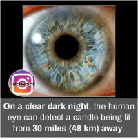 Facts, Friends, and Lit: FactPoint  On a clear dark night, the human  eye can detect a candle being lit  from 30 miles (48 km) away. Sharp hun 😯 did you know fact point , education amazing dyk unknown facts daily facts💯 didyouknow follow follow4follow earth science commonsense f4f factpoint instafact awesome world worldfacts like like4ike tag friends Don't forget to tag your friends 👍