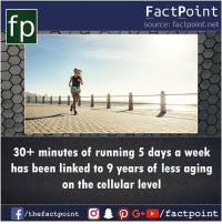 Good for You, Memes, and Good: FactPoint  source: factpoint.net  30+ minutes of running 5 days a week  has been linked to 9 years of less aging  on the cellular level Running is good for you 🏃