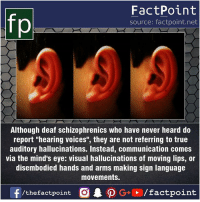 "Facts, Friends, and Memes: FactPoint  source: factpoint.net  Although deaf schizophrenics who have never heard do  report ""hearing voices"", they are not referring to true  auditory hallucinations. Instead, communication comes  via the mind's eye: visual hallucinations of moving lips, or  disembodied hands and arms making sign language  movements. Fact sources mentioned at www.FactPoint.net- did you know fact point , education amazing dyk unknown facts daily facts💯 didyouknow follow follow4follow earth science commonsense f4f factpoint instafact awesome world worldfacts like like4ike tag friends Don't forget to tag your friends 👍"