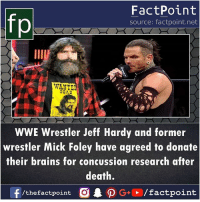 Concussion: FactPoint  source: factpoint.net  IIA  WANTE  DEAD  WWE Wrestler Jeff Hardy and former  wrestler Mick Foley have agreed to donate  their brains for concussion research after  death.  f  . ρ G+E / factpoint  /thefactpoint C