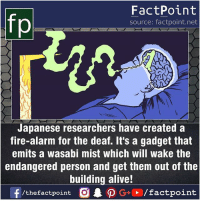 Alive, Facts, and Fire: FactPoint  source: factpoint.net  Japanese researchers have created a  fire-alarm for the deaf. It's a gadget that  emits a wasabi mist which will wake the  endangered person and get them out of the  building alive!  f/thefactpoint O.DG+. /factpoint Fact sources mentioned at www.FactPoint.net- did you know fact point , education amazing dyk unknown facts daily facts💯 didyouknow follow follow4follow earth science commonsense f4f factpoint instafact awesome world worldfacts like like4ike tag friends Don't forget to tag your friends 👍