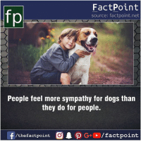 Fact sources mentioned at www.FactPoint.net- did you know fact point , education amazing dyk unknown facts daily facts💯 didyouknow follow follow4follow earth science commonsense f4f factpoint instafact awesome world worldfacts like like4ike tag friends Don't forget to tag your friends 👍: FactPoint  source: factpoint.net  People feel more sympathy for dogs than  they do for people.  f/thefactpoint  G+/factpoint Fact sources mentioned at www.FactPoint.net- did you know fact point , education amazing dyk unknown facts daily facts💯 didyouknow follow follow4follow earth science commonsense f4f factpoint instafact awesome world worldfacts like like4ike tag friends Don't forget to tag your friends 👍