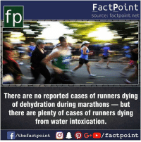 Facts, Friends, and Memes: FactPoint  source: factpoint.net  There are no reported cases of runners dying  of dehydration during marathons-but  there are plenty of cases of runners dying  from water intoxication.  f/thefactpoint O  P G/factpoint Fact sources mentioned at www.FactPoint.net- did you know fact point , education amazing dyk unknown facts daily facts💯 didyouknow follow follow4follow earth science commonsense f4f factpoint instafact awesome world worldfacts like like4ike tag friends Don't forget to tag your friends 👍
