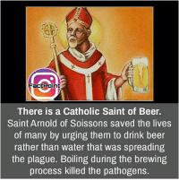 Follow our page for more Facts 😇 Don't forget to tag your friends 💖: FactPoint  There is a Catholic Saint of Beer.  Saint Arnold of Soissons saved the lives  of many by urging them to drink beer  rather than water that was spreading  the plague. Boiling during the brewing  process killed the pathogens. Follow our page for more Facts 😇 Don't forget to tag your friends 💖
