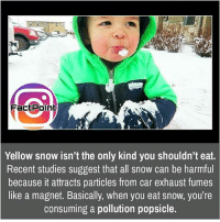 Facts, Friends, and Memes: FactPoint  Yellow snow isn't the only kind you shouldn't eat.  Recent studies suggest that all snow can be harmful  because it attracts particles from car exhaust fumes  like a magnet. Basically, when you eat snow, you're  consuming a pollution popsicle. Don't eat it 😯 did you know fact point , education amazing dyk unknown facts daily facts💯 didyouknow follow follow4follow earth science commonsense f4f factpoint instafact awesome world worldfacts like like4ike tag friends Don't forget to tag your friends 👍