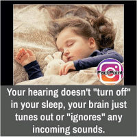 "Facts, Friends, and Memes: FactPoint  Your hearing doesn't ""turn off""  in your sleep, your brain just  tunes out or ""ignores"" any  incoming sounds. We just ignore sounds while sleeping 😯 did you know fact point , education amazing dyk unknown facts daily facts💯 didyouknow follow follow4follow earth science commonsense f4f factpoint instafact awesome world worldfacts like like4ike tag friends Don't forget to tag your friends 👍"