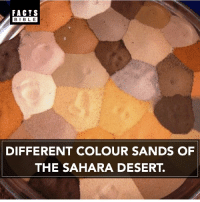 Memes, 🤖, and Desert: FACTS  BIBLE  DIFFERENT COLOUR SANDS OF  THE SAHARA DESERT. This is so cool 😲😍
