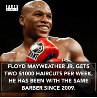 What about the fact that Mayweather has no hair 🤔👀: FACTS  BIBLE  FLOYD MAYWEATHER JR. GETS  TWO $1000 HAIRCUTS PER WEEK,  HE HAS BEEN WITH THE SAME  BARBER SINCE 2009. What about the fact that Mayweather has no hair 🤔👀