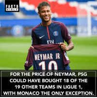 Facts, Football, and Instagram: FACTS  BIBLE  FlV  NEYMAR JR  FOR THE PRICE OF NEYMAR, PSG  COULD HAVE BOUGHT 18 OF THE  19 OTHER TEAMS IN LIGUE 1,  WITH MONACO THE ONLY EXCEPTION If you're not following @football.newz you might as well delete Instagram 👌