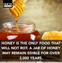 Facts, Food, and Memes: FACTS  BIBLE  HONEY IS THE ONLY FOOD THAT  WILL NOT ROT A JAR OF HONEY  MAY REMAIN EDIBLE FOR OVER  3,000 YEARS. That's a long time 👀