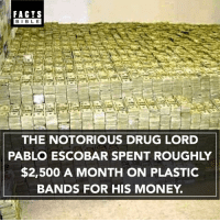 Memes, 🤖, and Plastic: FACTS  BIBLE  THE NOTORIOUS DRUG LORD  PABLO ESCOBAR SPENT ROUGHLY  $2,500 A MONTH ON PLASTIC  BANDS FOR HIS MONEY Crazy 😳💵