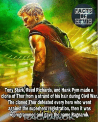 marvelousfacts marvelentertainment marvelcinematicuniverse marvelcomics avengers thor asgard asgardian thorragnarok like4like commentforcomment factsofcomics facts: FACTS  COMIC  Tony Stark Reed Richards, and Hank Pym made a  clone ofThor from a strand of his hair during Civil War  The cloned Thor defeated every hero who went  against the superhero registration, then it was  reprogrammed and gave the name Ragnarok. marvelousfacts marvelentertainment marvelcinematicuniverse marvelcomics avengers thor asgard asgardian thorragnarok like4like commentforcomment factsofcomics facts