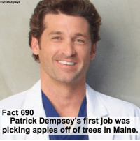 Fact 690😱 Patrick Dempsey's first job was picking apples off of trees in Maine. — factsforgreys_patrick greys greysanatomy patrickdempsey derekshepherd merder dempeo mcdreamy apples maine shondaland abc ga tgit like facts likeforlike like4like dancemoms: Facts forgreys  Fact 690  Patrick Dempsey's first job was  picking apples off of trees in Maine. Fact 690😱 Patrick Dempsey's first job was picking apples off of trees in Maine. — factsforgreys_patrick greys greysanatomy patrickdempsey derekshepherd merder dempeo mcdreamy apples maine shondaland abc ga tgit like facts likeforlike like4like dancemoms