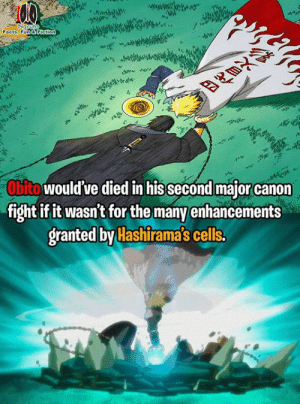 Facts, Memes, and Canon: Facts, Fun &F  Obito would've died in hissecond major canon  fight if it wasn't for the many enhancements  granted by Hashirama's cells. Well the opponent is minato. So  ~itachi