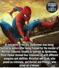 Facts, Life, and Memes: FACTS  MIC  At one point of his life, Spiderman was being  hunted by police after being framed for the murder of  Norman Osborne. Unable to operate as Spiderman,  Peter Parker donned four costumes all with different  weapons and abilities. Ricochet and Dusk, who  posed as criminals, and Hornet and Prodigy, Who  acted as a heroes. Typo Osborn* marvelentertainment marvelousfacts marvelcinematicuniverse marvelcomics amazingspiderman ultimatespiderman marvelstudios spiderman spidermanhomecoming factsofcomics factsofcomic facts