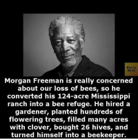 Morgan Freeman: Facts  Morgan Freeman is really concerned  about our loss of beesn so he  converted his 124-acre Mississippi  ranch into a bee refuge. He hired a  gardener, planted hundreds of  flowering trees, filled many acres  with clover, bought 26 hives, and  turned himself into a beekeeper
