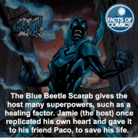 Memes, 🤖, and The Host: FACTS OF  MMI  The Blue Beetle Scarab gives the  host many superpowers, such as a  healing factor. Jamie (the host once  replicated his own heart and gave it  to his friend Paco, to save his life. Who is your favorite Young Justice Member?! factsofcomics