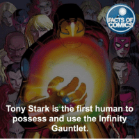 Memes, Infiniti, and Infinity: FACTS OF  MMI  Tony Stark is the first human to  possess and use the Infinity  Gauntlet. Who's your favorite villain?! factsofcomics
