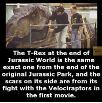 Jurassic Park: Facts  The T-Rex at the end of  Book  Jurassic World is the same  exact one from the end of the  original Jurassic Park, and the  scars on its side are from its  fight with the Velociraptors in  the first movie