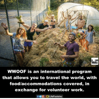 Memes, 🤖, and Exchange: FACTS  WWooF is an international program  that allows you to travel the world, with  food accommodations covered, in  exchange for volunteer work
