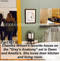 "Abc, Facts, and Memes: Factsforgreys  LEXAANDMAD  Fact 857  Chandra Wilson's favorite house on  the ""Grey's Anatomy"" set is Owen  and Amelia's. She loves their kitchen  and living room Fact 857😱 Chandra Wilson's favorite house on the ""Grey's Anatomy"" set is Owen and Amelia's. She loves their kitchen and living room. — **The furniture has a covering on it so that it doesn't get dusty or damaged when it's not being used. ** This is a photo of my friend and I with Chandra from when I visited the @greysabc set in December! I'm going to start posting more facts that I picked up on the set, as well as some photos from my visit! To see more pictures of my set visit (and some of me with members of the cast), follow @alexaandmaddievisitgreys ! *PLEASE READ: ""Grey's Anatomy"" is filmed on a closed set. You can not visit the set unless you personally know a cast or crew member. To read about how I got to visit the set, read the most recent post on @alexaandmaddievisitgreys !* ((My personal is @akpascucci )) — factsforgreys_set factsforgreys_chandra greys greysanatomy greysanatomyset greysset chandrawilson mirandabailey benley omelia owenhunt ameliashepherd shondaland abc ga tgit like facts likeforlike like4like dancemoms"