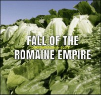 Empire, Memes, and 🤖: FAEL OF THE  ROMAINE EMPIRE  KNOWN  IPUNster @2018 The Romaines were brought down by the Broccoli e.coli.  #UnKNOWN_PUNster