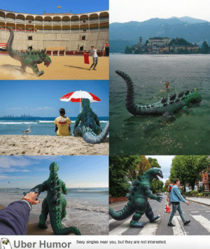 failnation:  For the past 4 years I've been photoshopping a plastic Godzilla into my travel photos.: failnation:  For the past 4 years I've been photoshopping a plastic Godzilla into my travel photos.