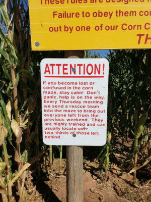 Confused, Lost, and Help: Failure to obey them co  out by one of our Corn C  TH  ATTENTION!  If you become lost or  confused in the corn  maze, stay calm! Don't  panic, help is on the way  Every Thursday morning  we send a rescue team  into the maze to bring out  everyone left from the  previous weekend. They  are highly trained and can  usually locate over  two-thirds those left  behind At a corn maze