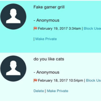Cats, Fake, and Memes: Fake gamer grill  Anonymous  R February 19, 2017 3:34am I Block User  I Make Private  do you like cats  Anonymous  FU February 18, 2017 10:54pm  I Block Us  Delete Make Private 1-idk what a game is idk her 2-yes !!!