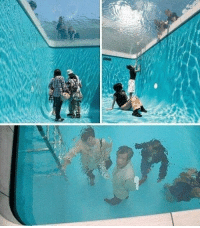 Fake swimming pool I would pretend to drown in this so i could see someone dive on to a solid surface: Fake swimming pool I would pretend to drown in this so i could see someone dive on to a solid surface