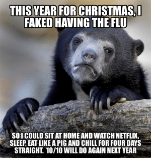 Chill, Family, and Traffic: FAKED HAVING THE FLU  4  SOI COULD SIT AT HOME AND WATCH NETFLIK,  SLEEP, EAT LIKE A PIG AND CHILL FOR FOUR DAYS  STRAIGHT. 10/10 WILL DO AGAIN NEXT YEAR I cant stand people/traffic this time of year, and turned down several invitations to go out, etc. I had no family in town, so