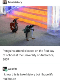 Penguins first day of school. (c. late 2019): fakehistory  Penguins attend classes on the first day  of school at the University of Antarctica,  2007  waevin  i know this is fake history but i hope it's  real future Penguins first day of school. (c. late 2019)