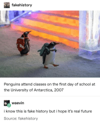 Gotta be late for how to escape a seal class: fakehistory  Penguins attend classes on the first day of school at  the University of Antarctica, 2007  waevin  i know this is fake history but i hope it's real future  Source: fakehistory Gotta be late for how to escape a seal class