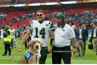 Ryan Fitzpatrick, Game, and Post: @FakeSportsCentr Ryan Fitzpatrick post-game...