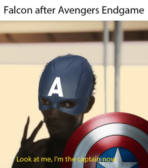 Reddit, American, and Avengers: Falcon after Avengers Endgame  Look at me, I'm the captain now Captain African American