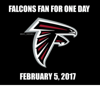 Double tap if this is you RiseUp: FALCONS FAN FOR ONE DAY  @NFL MEMES  FEBRUARY 5, 2017 Double tap if this is you RiseUp