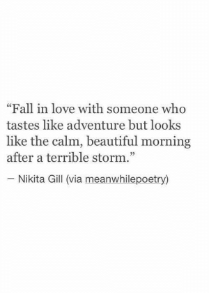 "Beautiful, Fall, and Love: ""Fall in love with someone who  tastes like adventure but looks  like the calm, beautiful morning  after a terrible storm.""  - Nikita Gill (via meanwhilepoetry)"