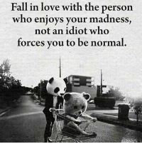 No idiots. motivationmafia: Fall in love with the person  who enjoys your madness  not an idiot who  forces you to be normal. No idiots. motivationmafia