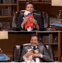 """Fall, Head, and Target:  # FALL  Iss <h2><a href=""""https://www.youtube.com/watch?v=59-8J0Hr39w&amp;feature=youtu.be"""" target=""""_blank"""">Jimmy and Ben Affleck go head-to-head in Pup Quiz!</a></h2>"""