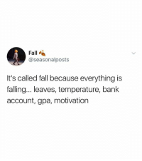 Fall, Bank, and Dank Memes: Fall  @seasonalposts  It's called fall because everything is  falling...leaves, temperature, bank  account, gpa, motivation (@ship)
