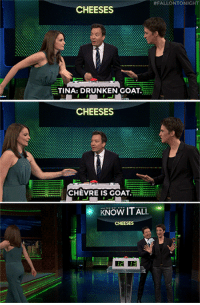 """Target, youtube.com, and Goat:  #FALLONTONICHT  CHEESES  TINA: DRUNKEN GOAT  CHEESES  CHEVRE IS GOAT  KNOW IT ALL  CHEESES  2 13 <p><a href=""""https://www.youtube.com/watch?v=xd2byPBElig&amp;index=3&amp;list=UU8-Th83bH_thdKZDJCrn88g"""" target=""""_blank"""">Tina Fey and Rachel Maddow face off in a new game to see who&rsquo;s the bigger &ldquo;Know It All&rdquo;!</a><br/></p>"""