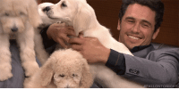 """James Franco, Target, and youtube.com: FALLONTONIGHT <p><a href=""""https://www.youtube.com/watch?v=RJxYPpv2Tss"""" target=""""_blank"""">James Franco had the correct answers to some """"ruff"""" questions in a game of Pup Quiz!</a></p>"""