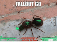 "9gag, Hype, and Memes: FALLOUT GO  45%  55%  !!!!!!!!""mmmmmmm""tmle%ー-lllllllllllllllllllllllll-  : EiselFCUtter And tagggib d呗■ ] Seas 
