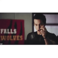 """lmao kai is the loml and anybody who says he isn't can fight me - He was so funny and deserved so much better like 😫 tvd could have done so much better with him 😒 - qotd: Ian or Damon? aotd: Damon 👊🏼🖤 no offense but Ian seems like one of those snooty people who drink wine and ask for special things at restaurants just to show people they're better. He's so annoying in interviews when people ask """"what's your favorite ship from the show?"""" And he says an entire essay about what he thinks. Anyway that's just my opinion 😂 - tvd tvdedits thevampirediaries thevampirediariesedits elenagilbert jeremygilbert stefansalvatore damonsalvatore bonniebennett carolineforbes kolmikaelson klausmikaelson rebekahmikaelson finnmikaelson elijahmikaelson freyamikaelson mattdonovan tylerlockwood defan stelena delena bamon bonkai enzostjohn bonenzo steroline melena: FALLS  WOLVES  """"UO lmao kai is the loml and anybody who says he isn't can fight me - He was so funny and deserved so much better like 😫 tvd could have done so much better with him 😒 - qotd: Ian or Damon? aotd: Damon 👊🏼🖤 no offense but Ian seems like one of those snooty people who drink wine and ask for special things at restaurants just to show people they're better. He's so annoying in interviews when people ask """"what's your favorite ship from the show?"""" And he says an entire essay about what he thinks. Anyway that's just my opinion 😂 - tvd tvdedits thevampirediaries thevampirediariesedits elenagilbert jeremygilbert stefansalvatore damonsalvatore bonniebennett carolineforbes kolmikaelson klausmikaelson rebekahmikaelson finnmikaelson elijahmikaelson freyamikaelson mattdonovan tylerlockwood defan stelena delena bamon bonkai enzostjohn bonenzo steroline melena"""