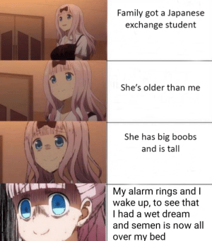 Anime, Family, and Meme: Family got a Japanese  exchange student  She's older than me  She has big boobs  and is tall  My alarm rings and  wake up, to see that  I had a wet dream  and semen is now all  over my bed Japanese exchange student meme: the real version