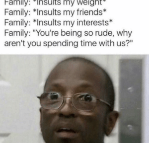 "Dank, Family, and Friends: Family:Insults  my  weight  Family: *Insults my friends*  Family: *Insults my interests*  Family: ""You're being so rude, why  aren't you spending time with us?"" Meirl by MussoIiniTorteIIini MORE MEMES"