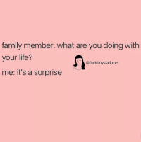 Family, Life, and Girl Memes: family member: what are you doing with  your life?  me: it's a surprise  @fuckboysfailures