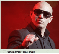 this makes me wheeze for reasons I do NOT I=UNDERATSNAD: Famous Singer Pitbull image this makes me wheeze for reasons I do NOT I=UNDERATSNAD